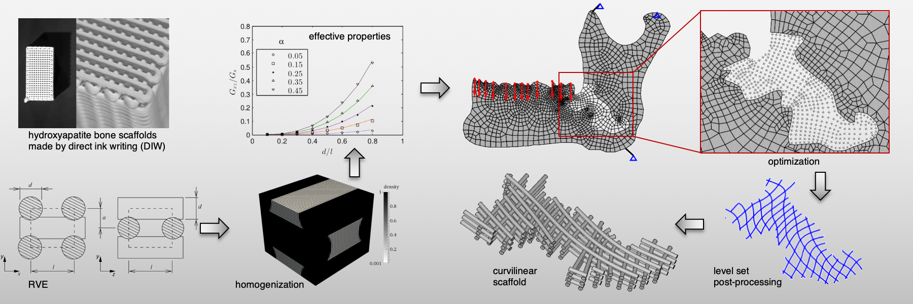 This slide shows the steps of a computational method to design synthetic, curvilinear bone scaffolds
